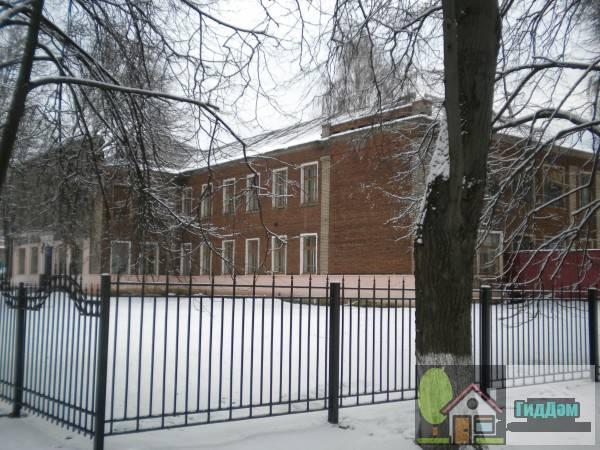 Вид на дом №27 по Технической улице со стороны переулка Алябьева. Снимок сделан в светлое время суток при слабом снегопаде.