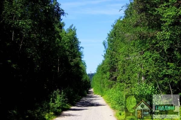 Дорога Соловецкий монастырь - Секирная гора - Савватьево - Исаково - Новая Сосновка. Загружен из открытых источников.