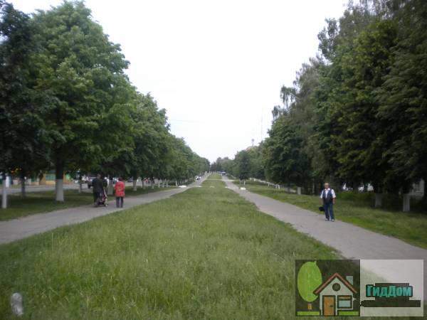 Общий вид на бульварную часть улицы Дзержинского в сторону проспекта Кирова от школы №10 с юго-восточной стороны стороны. Снимок сделан в выходной день в светлое время суток при слабой облачности.