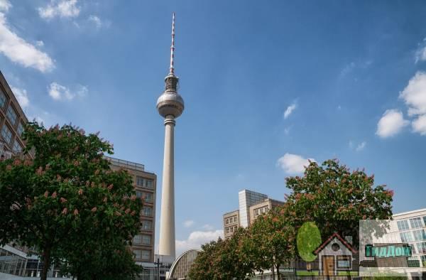 Александерплатц, Берлинская телебашня. Автор снимка — Елена Витинг