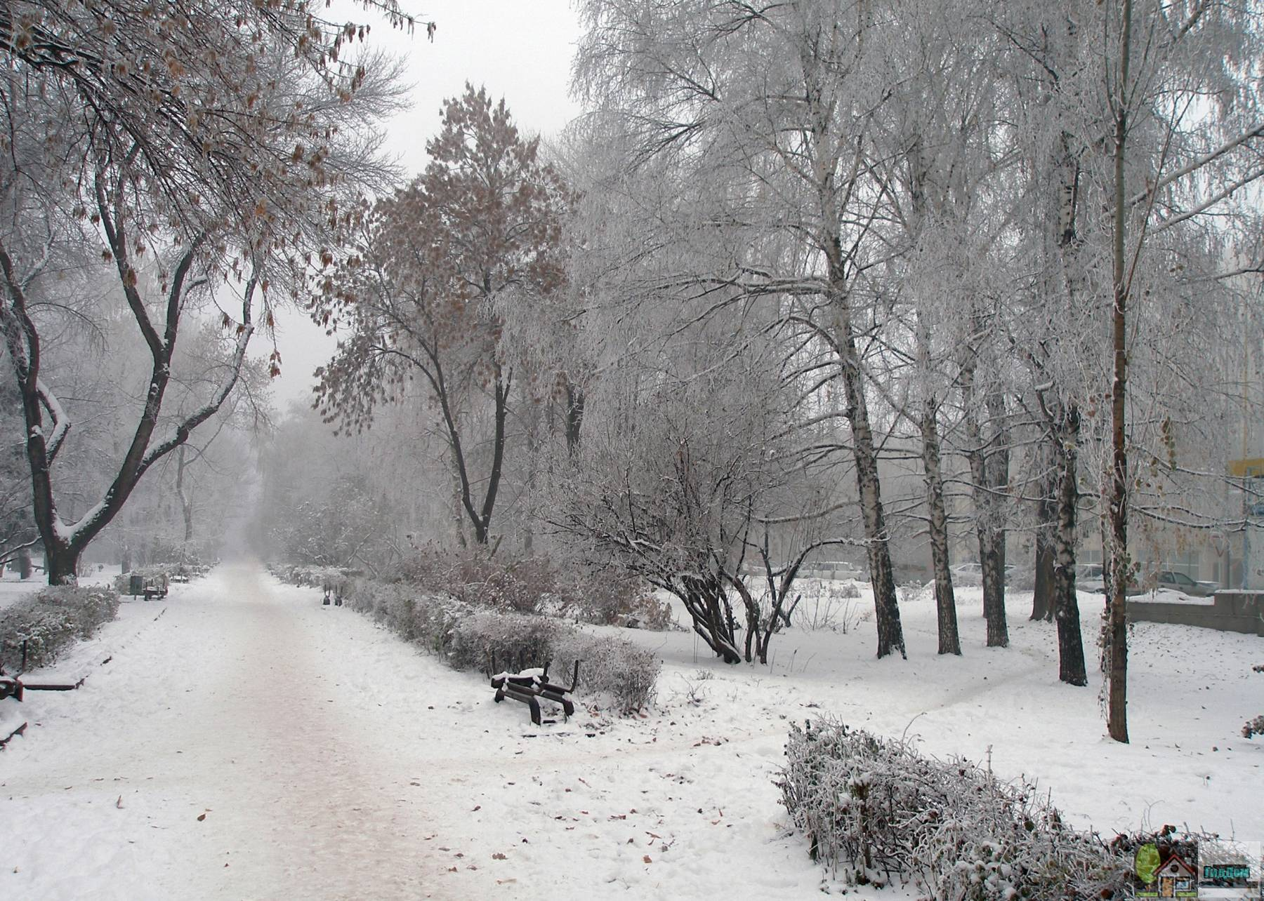 Бульвар на Астраханской улице Саратова. Снимок загружен из открытых источников.