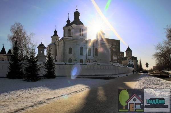 Елизаветинская церковь (Храм в честь Всемилостивого Спаса)