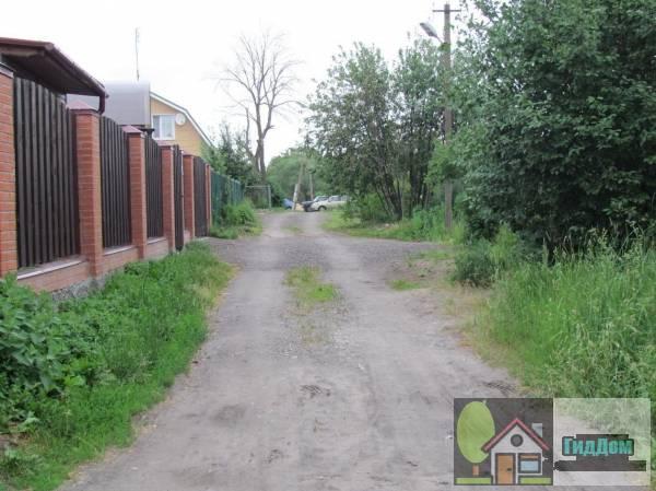 Улица Речная села Большое Карасёво Файл загружен из открытых источников.